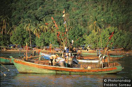 Vietnam, delta du Mékong, Ha Tien, bateaux de pêcheurs