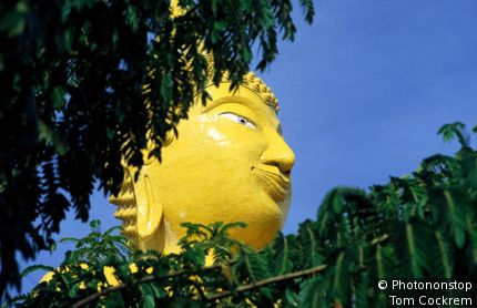 Giant yellow Buddha through trees. Chonburi, Thailand