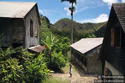 La Griveliére (old colonial coffee plantation), Vallée de Grande Rivière, 97119 Vieux Habitants, Guadeloupe (Basse Terre)