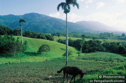 République Dominicaine, Jarabacoa, paysage