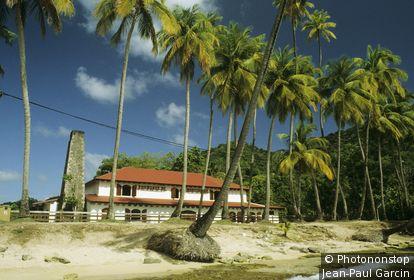Martinique, Sainte Luce, Anse Figuier, écomusée de la rivière Pilote