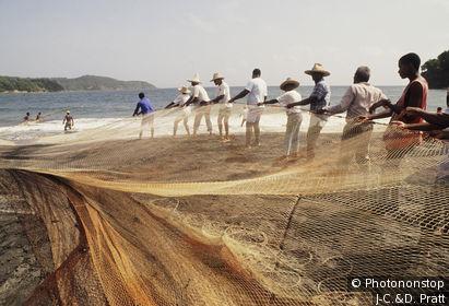 Martinique, Sainte Marie, pêcheurs sortant filet de l'eau