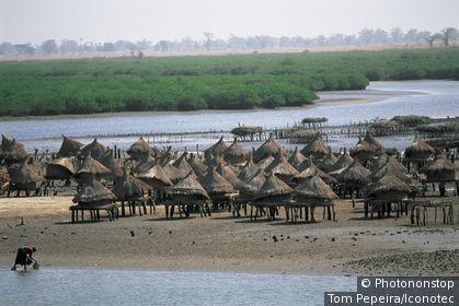Sénégal, Village de Joal-Fadiuth. Maisons sur pilotis