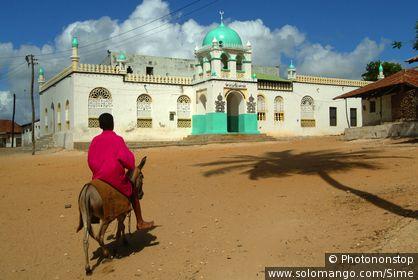 Kenya Lamu archipelago Lamu town Riyadha mosque