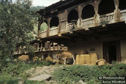 Inde, Himachal Pradesh, région de Manali, facade d'une maison traditionnelle, balcon en bois, vache
