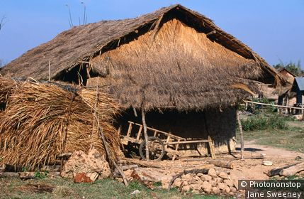 Thatch house. Muang Sing, Luang Nam Tha, Laos