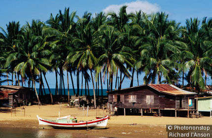 Boats and the kampung ( village ) - Marang, Terengganu