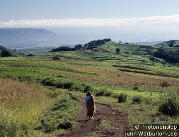 Tanzania;Mbeya - In the early morning, a woman walks along a track in the fertile Southern Highlands region of Tanzania