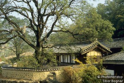 Corée du sud, près de Gyeongju, village traditionnel Yangdong, verdure