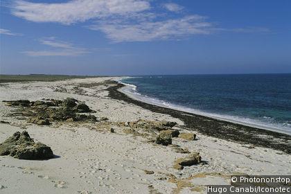 Punta is Arutas
