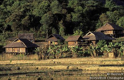 Black Thai villages