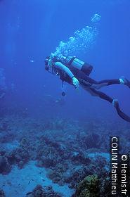 Cousteau Reserve