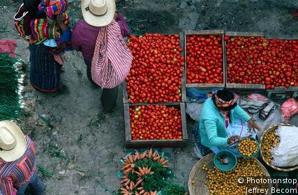 San Francisco El Alto Market