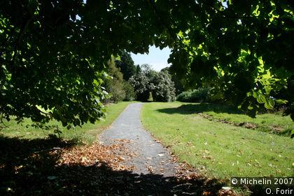 Kennedy Arboretum