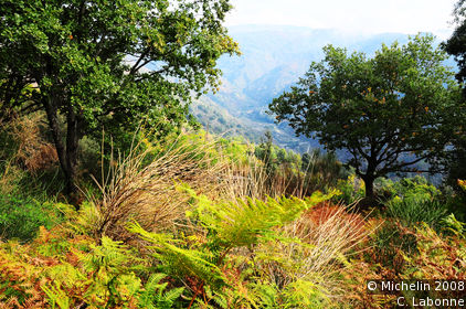 Panoramic views of Aspromonte