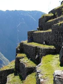 Secteur agricole de Machu Picchu