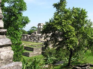 Palenque Site: Palace