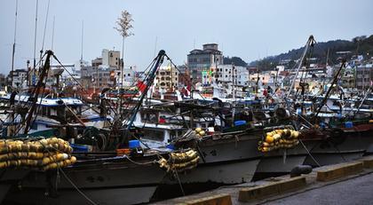 tongyoung port