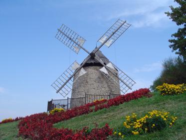 Moulin à vent à Lautrec