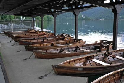 Rowing Boats at Lake Bled
