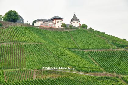 Marienburg depuis Pünderich