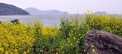 spring of namhae