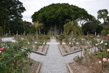 Dans les jardins de la propriété