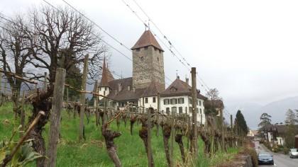 Spiez - Château de Spiez