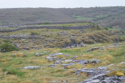 Un enclos dans le Burren