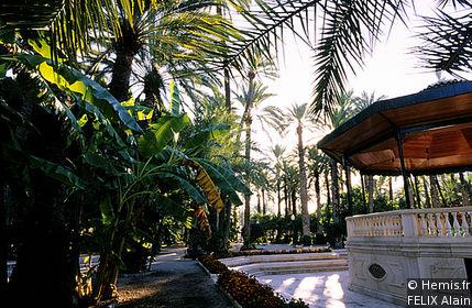 Palm Grove Museum