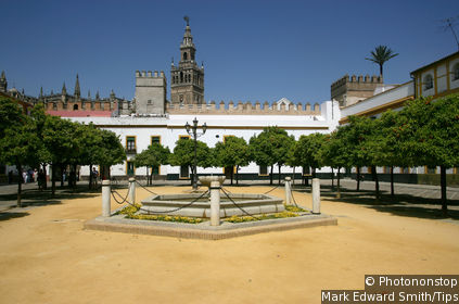 Royal Alcazar : Gothic Palace or Charles V's Apartments