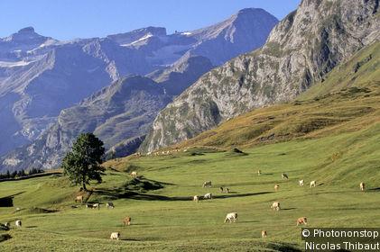 Luz-Gavarnie Valley
