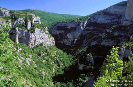 Nesque Gorge