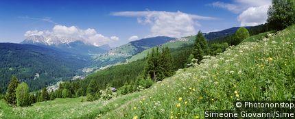 Parco Nazionale Dolomiti Bellunesi