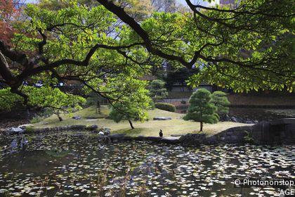 Koraku-en Garden