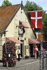 Fyn Village