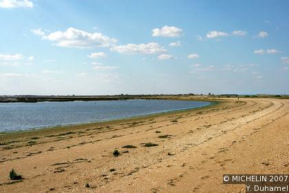 Las Marismas del Odiel Natural Site