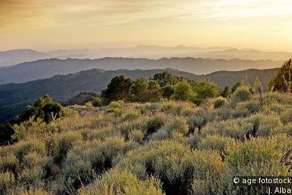 Los Montes de Málaga Nature Reserve