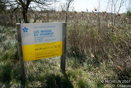 Marais du Vigueirat Marshes