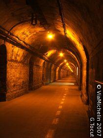 Mumm cellars