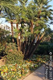 Olbius Riquier Gardens