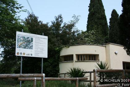 Necropolis of the Banditaccia
