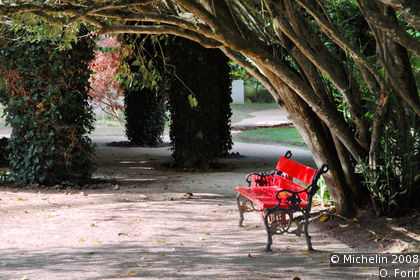 Park of D. Carlos I