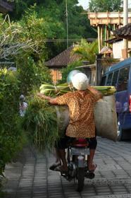 Dans les rues d'Ubud