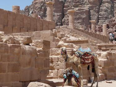 Lower City of Petra