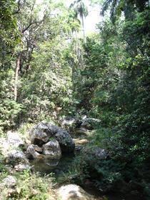 Parque Natural Topes de Collantes