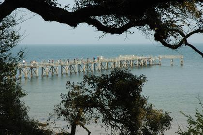 Noirmoutier : la Plage des Dames