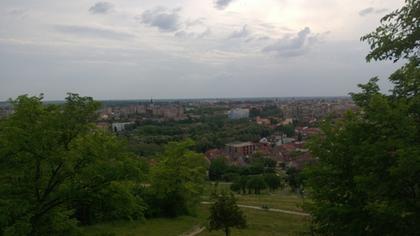 Oradea vazuta de la ciuperca