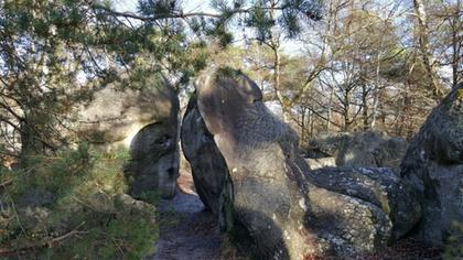 de roc et de bois
