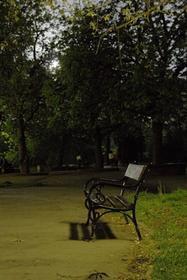 Boris garden